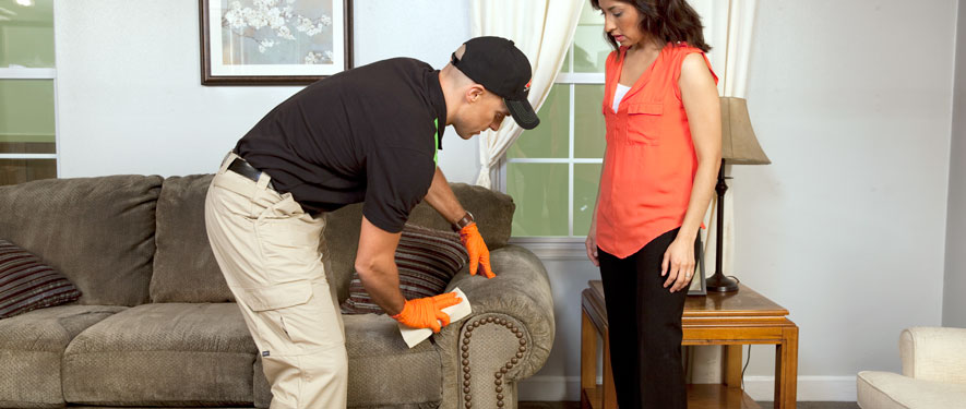 Fort Lee, NJ carpet upholstery cleaning